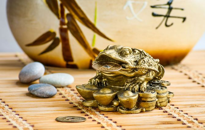 Китайская жаба приносящая деньги
