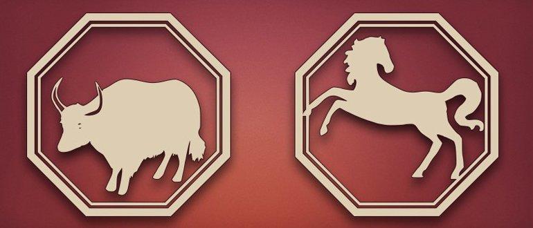 бык и лошадь