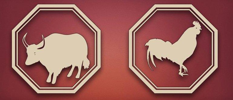 бык и петух