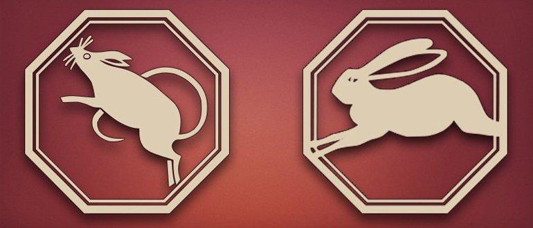 крыса и кролик