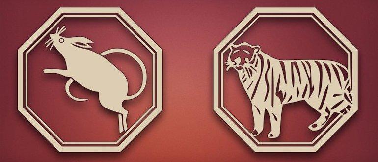 Крыса и тигр