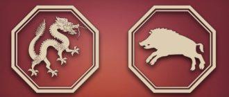 дракон и свинья