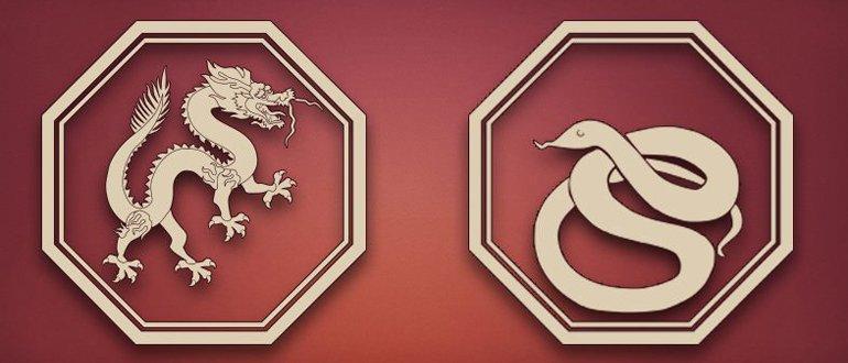 дракон и змея