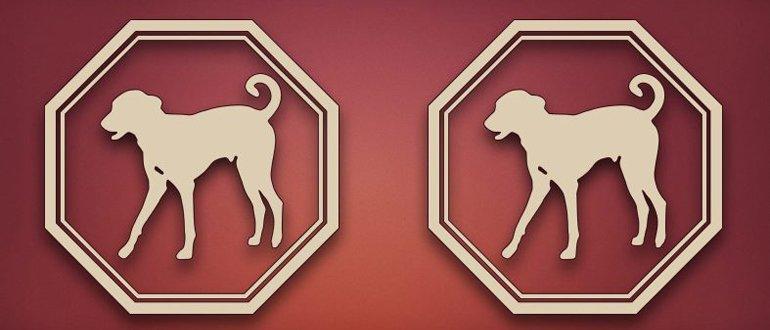 Собака и Собака