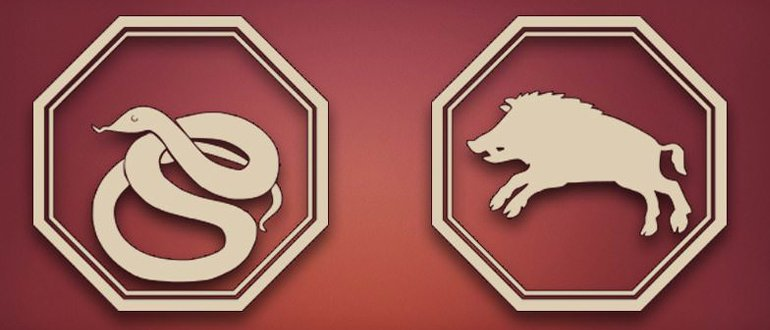 Змея и Свинья