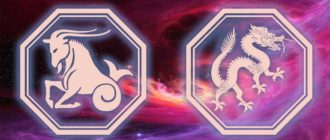 Козерог дракон