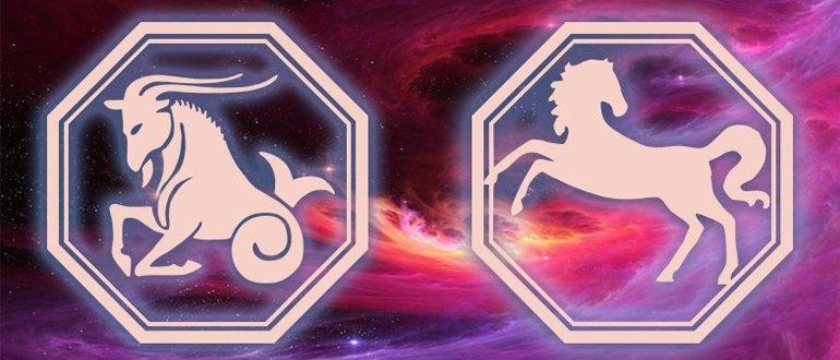 Козерог Лошадь