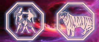 Близнецы тигр