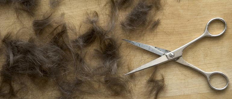 отрезанные волосы